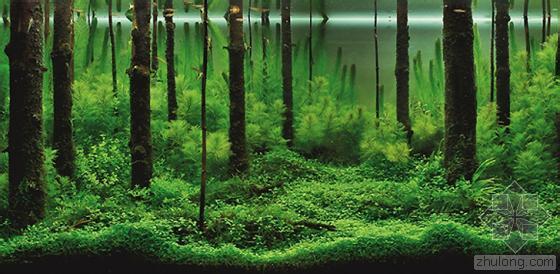 水下景观设计方案